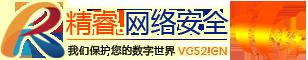 精睿(vc52).网络安全